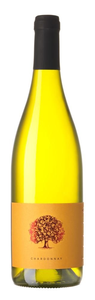 Chardonnay, Sončna Tilia 2018